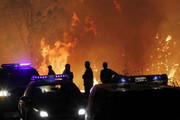 ارتباط تغییرات آب و هوایی با آتشسوزی در جنگل