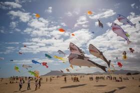 عکس روز: جشنواره بادبادکها