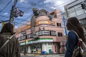 عکس روز | کینگ کنک ژاپنی
