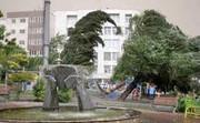 وزش باد نسبتا شدید در پایتخت