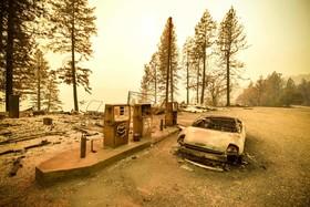 عکس روز: پس از عبور آتش