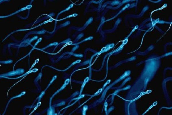 انتقال جنسی کرونا امکان پذیر است/ویروس کرونا در اسپرم هم پیدا شد
