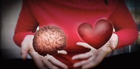 چه میدانید از هوش هیجانی؟