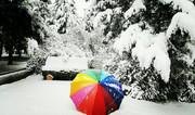 برف و باران در ۱۶ استان | خروج سامانه بارشی از کشور از ۲۷ آبان