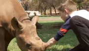 فیلم   یک پسربچه و جمعآوری ۱۴ هزار یورو برای حفاظت از بچه کرگدنها