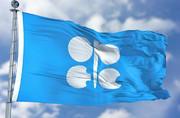 وزیر انرژی عربستان: مطمئن نیستم که کمبود عرضه وجود دارد