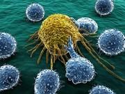 راهکارمحققان کشور برایدرمان ۳ نوع سرطان با داروهای اعصاب و روان