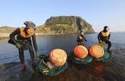 عکس روز: زنان دریا
