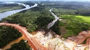 تخریب جنگلهای آمازون بیش از ۱۳درصد افزایش یافت