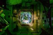 کشف باکتری مقاوم در برابر آنتیبیوتیک در ایستگاه فضایی