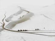 عکس روز: شترها در برف