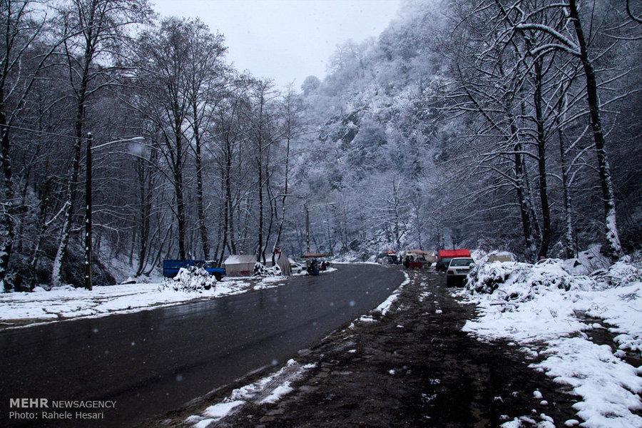 بارش برف در محورهای کوهستانی البرز/مسیرهای ارتباطی باز است