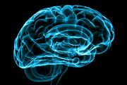 چطور حافظه ضعیف میشود؟