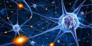 پیشگیری از متاستاز سرطان با کمک یک نانو ژل جدید