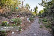 روند تخلیه زباله در جنگلهای مازندران متوقف شود