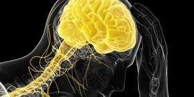 اثر استرس بر بدن در غروب شدیدتر است