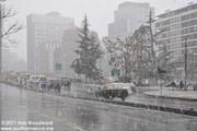 آغاز طرح زمستانی پلیس و شهرداری تهران در پایتخت