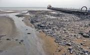 ضربالاجل دو ماهه برای ساماندهی ساحل بندرعباس