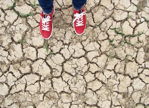 زمین سخاوتمند، انسان بیتفاوت