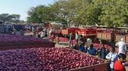 براندازی با پیاز و سیبزمینی | کشاورزان هندی دولت را تهدید کردند