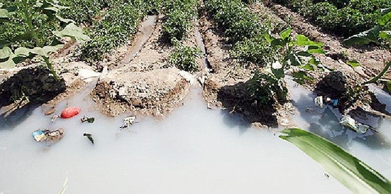 آب آلوده كشاورزي