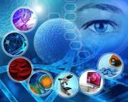 آیا تزریق سلولهای بنیادی یک درمان معجزهگر است؟