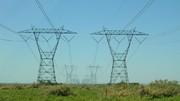 یک سمور برق ۱۷ هزار خانه را قطع کرد