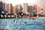 جدول | قیمت رهن و اجاره آپارتمان در منطقه ۲۱ تهران