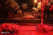 عکس | شب برفی تبریز