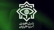 ضربه وزارت اطلاعات به باند فساد اقتصادی در گمرک | دستگیری یک مدیرکل