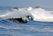 اقیانوسها چگونه میمیرند