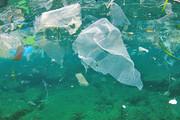 کمک به کاهش آلودگیهای پلاستیکی با طراحی دیوار دریایی در سیدنی