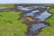 نفوذ میکروپلاستیکها به منابع آب زیرزمینی