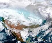 فیلم    هوای قطبی در آمریکا