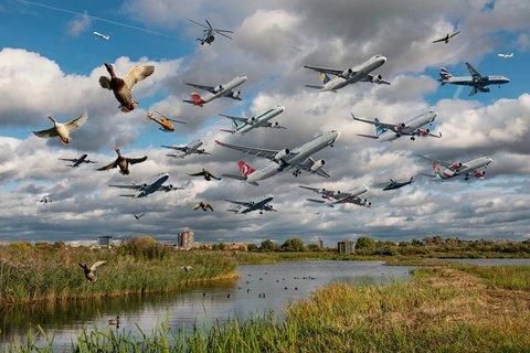 پردازش دیجیتالی   عبور چهل ویک هواپیما در یک ساعت