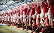 واردات گوشت قرمز با ارز دولتی متوقف میشود | خریداری گوشت با ارز نیمایی
