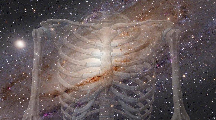 فضا استخوان