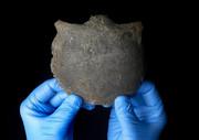 کشف جمجمه انسان ۵۶۰۰ ساله در ساحل رودخانه تایمز