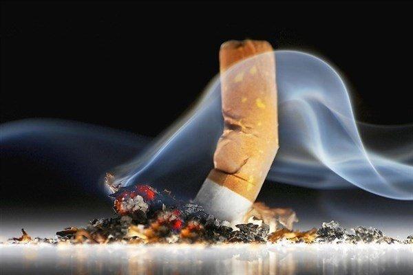 فیلتر سیگار ۳۰۰۰ ماده خطرناک دارد