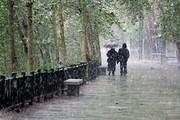 اطلاعیه سازمان هواشناسی درباره وضعیت بارش برف و باران تا پایان هفته