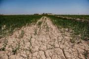 فرسایش خاک در مازندران فراتر از میانگین کشوری است