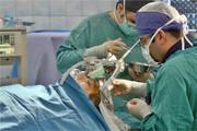 جدیدترین روش درمان تومورهای مغزی بدخیم در ایران ابداع شد