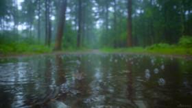 بارشهای پراکنده مهمان روزهای آینده در مازندران