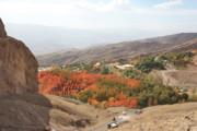 به تاراج رفتن بخشی از جنگلهای مناطق الموت قزوین