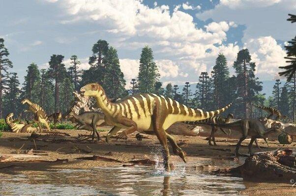 کشف فسیل ۱۲۵ میلیون ساله دایناسور در استرالیا