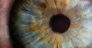 اندازه مردمک چشم هنگام اشتباه کردن تغییر میکند