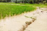 خسارت سنگین سیل به کشاورزان گلستانی