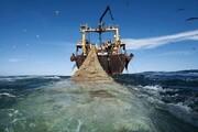 سپاه ۳ فروند شناور صید تِرال را در خلیج فارس توقیف کرد