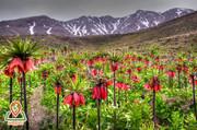 سفر به استان کهگیلویه و بویر احمد