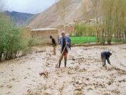 خسارت ۴۶ هزار میلیارد ریالی سیل به بخش کشاورزی